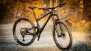 Bold Cycles a čtyři modely